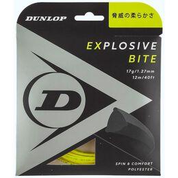 EXPLOSIVE BITE エクスプロッシブ・バイト