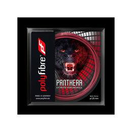 Panthera130 12m パンテーラ130 12メートル