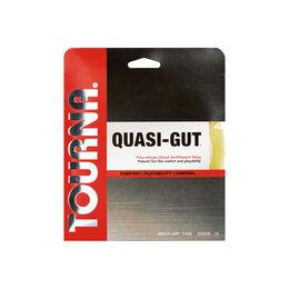 QUASI-GUT 17 クアシガット17