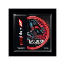 Evolution 120 12m エボリューション120 12メートル