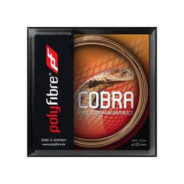 Cobra125 12m コブラ125 12メートル